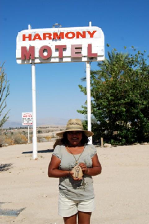 ash harmony motel