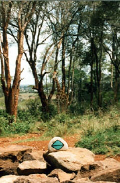 Kenya 21