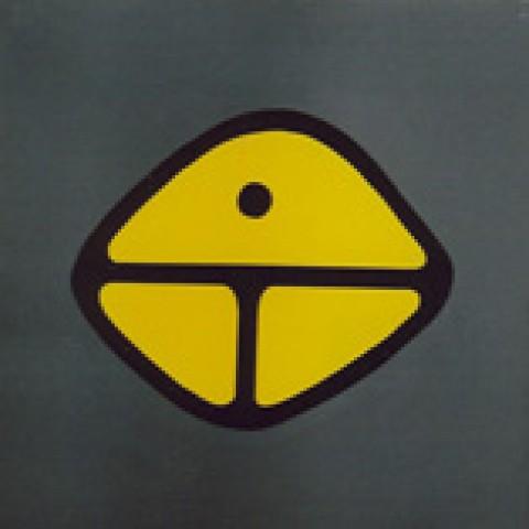 Symbol 12