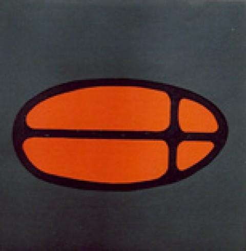 Symbol 15