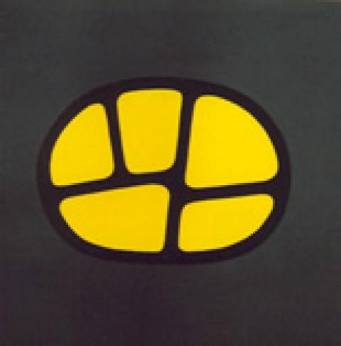 Symbol 25
