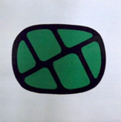 Symbol 35